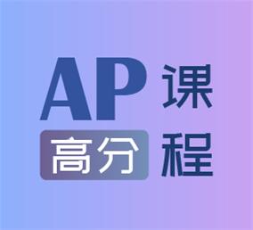 AP一对一高分班